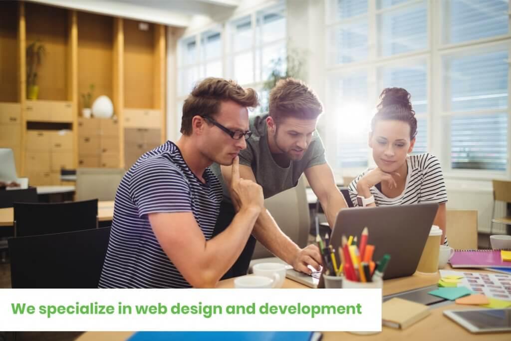 Web Design Sri Lanka web Solutions specializes in web design and development